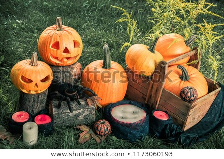 Scary pumpkin with a smile near candles and spider Stock photo © Illia