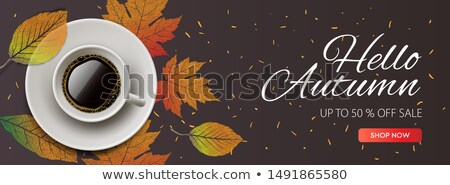 Hello Autumn Sale horizontal banner. Cup of coffee with autumn leaves. vector illustration for web b Stock photo © ikopylov
