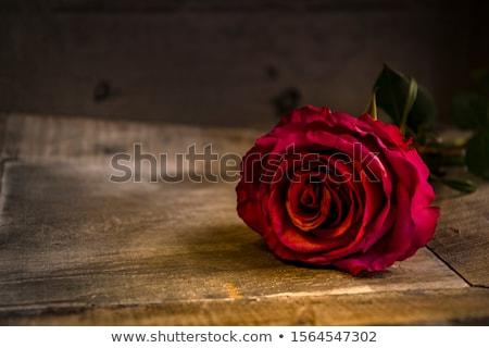 Karte · rote · Rosen · Herzen · Grußkarte · rote · Rose - stock foto © neirfy