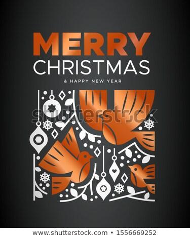 陽気な クリスマス 銅 鳥 カード グリーティングカード ストックフォト © cienpies