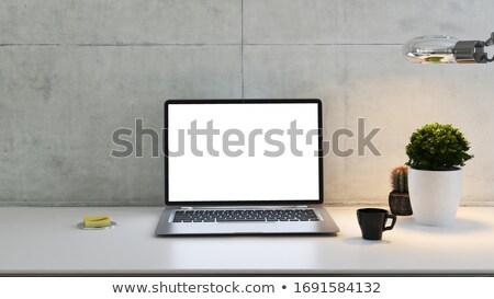 ноутбука столе завода лампы чашку кофе конкретные Сток-фото © sedatseven