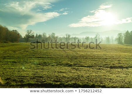 Rural landscape with green fields in autumn time, Austia. Stock photo © artjazz