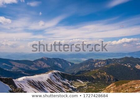 meadow, Nizke Tatry (Low Tatras), Slovakia Stock photo © phbcz