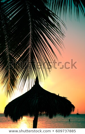 Ocean Sunset silhouetted with beach grass Stock photo © Frankljr