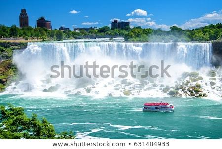 Hoefijzer Niagara Falls bewolkt dag natuur Stockfoto © aladin66