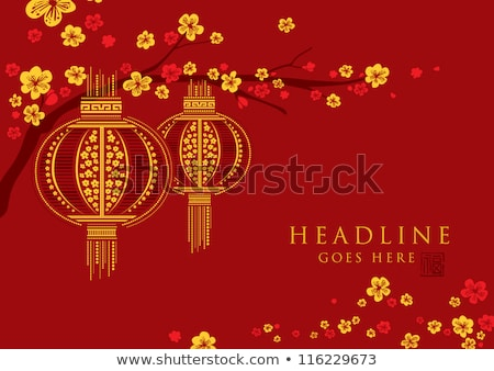 Китайский Новый год 2012 карт декоративный копия пространства красный Сток-фото © sahua
