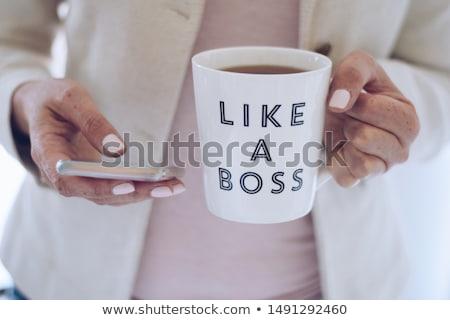 The boss Stock photo © ivonnewierink