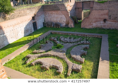ruins of palatine hill palace in rome italy stock photo © vladacanon