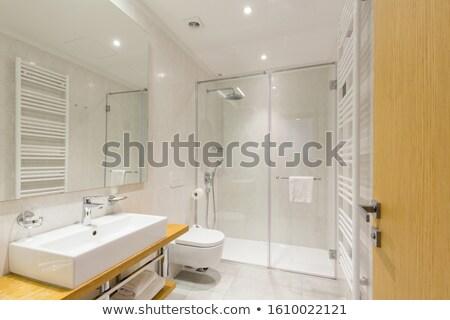 modern glass shower cabin Stock photo © ozaiachin