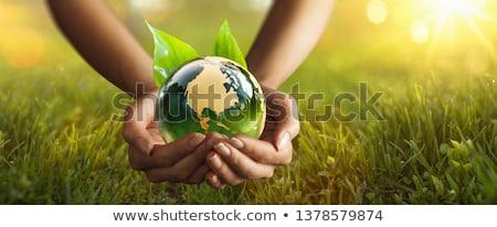 стекла · земле · человеческая · рука · небе · весны · стороны - Сток-фото © carpathianprince