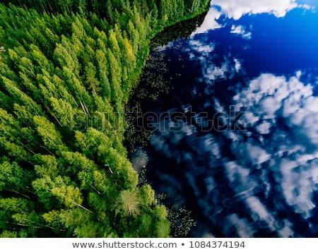Photo stock: Vert · paysage · lac · arbres · champs · arbre