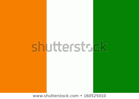 Wybrzeże Kości Słoniowej banderą ikona odizolowany biały Internetu Zdjęcia stock © zeffss