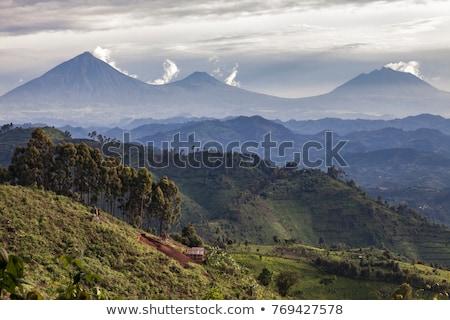 hegyek · Uganda · légifelvétel · körül · Afrika · erdő - stock fotó © prill