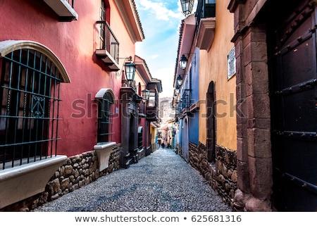 vektör · etiket · Bolivya · renk · damga · satış - stok fotoğraf © perysty