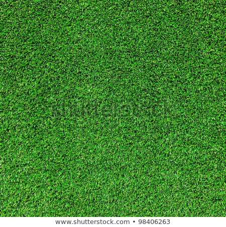 green grass texture from golf course Stock photo © Zhukow