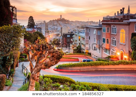 San Francisco houseing Stock photo © hlehnerer