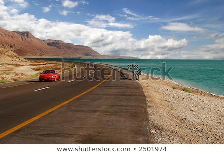 Snelweg dode zee Israël Rood bergen woestijn Stockfoto © rglinsky77