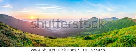 carpathian panorama stock photo © hraska