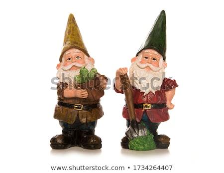 Garden Gnomes 2 Stock photo © naffarts