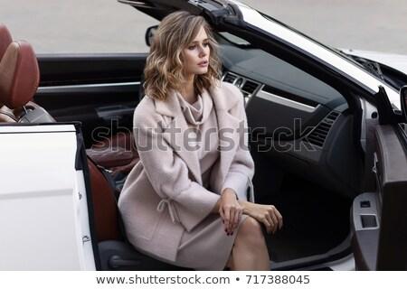 Beautiful  woman in brown dress in luxury interior.. Stock photo © Pilgrimego