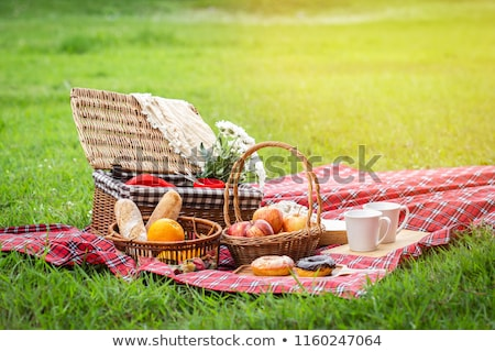 Picnic basket on the green garden background  Stock photo © tannjuska