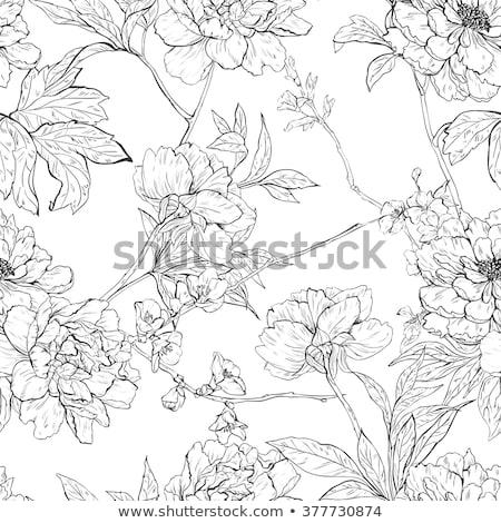 romantic color hand drawn floral ornament stock photo © elmiko