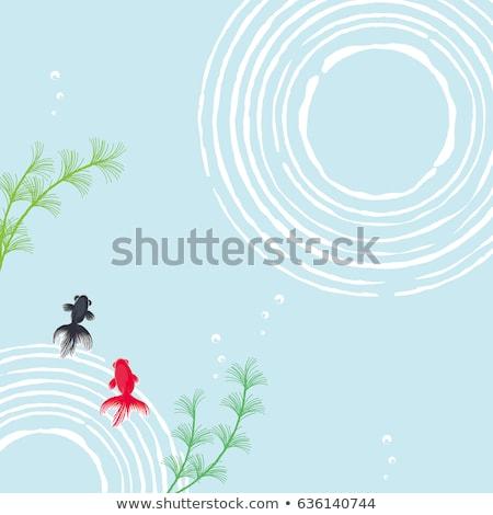Water Ripples and Fish Stock photo © ArenaCreative