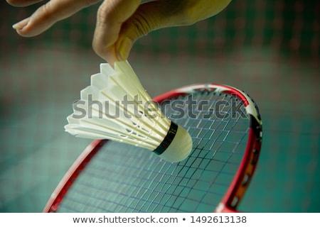 Strony biały badminton zdrowia Zdjęcia stock © Taigi