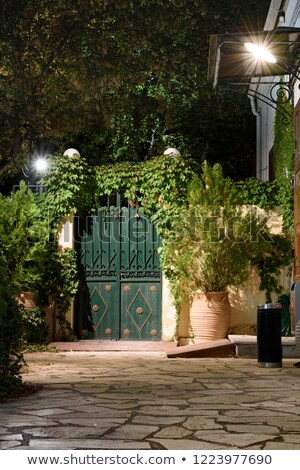 historical garden house at night Stock photo © Sarkao