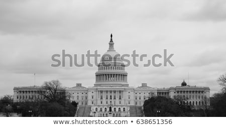The Washington Monument as seen from the US Capital Building Stock photo © Frankljr