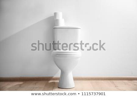 lavatory pan with toilet paper Stock photo © 26kot