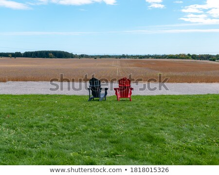 Lawn chairs over wheat field. Stock photo © iofoto