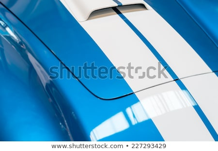 Detail of Grille of Blue and White Striped car Stock photo © kyolshin