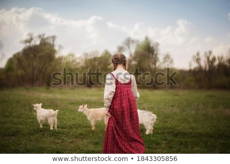 folk costumes little girl on the meadow stock photo © maros_b