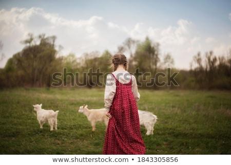 mooie · meisje · kostuum · hooi · gelukkig · leuk - stockfoto © maros_b