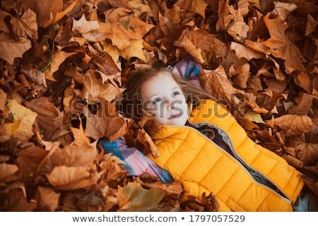 Boldog gyerek őszi levelek park lány gyermek Stock fotó © zurijeta