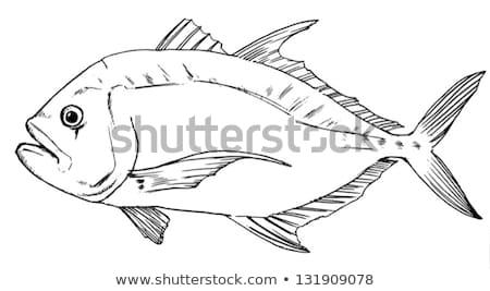 Gigante preto e branco esboço água peixe oceano Foto stock © bluering