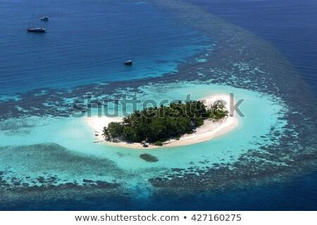 морской пейзаж воды подробность Мальдивы красивой пляж Сток-фото © luissantos84