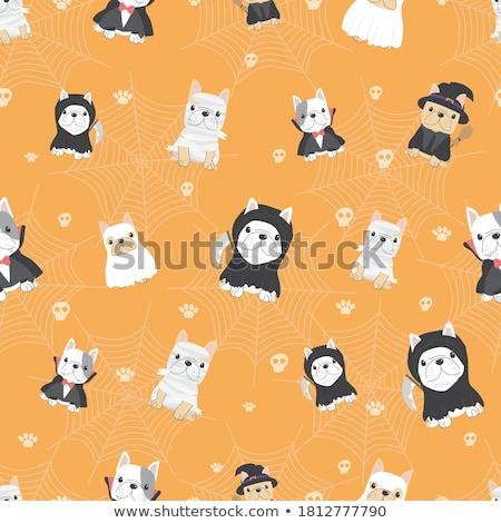 Witch seamless pattern, vector illustration Stock photo © carodi