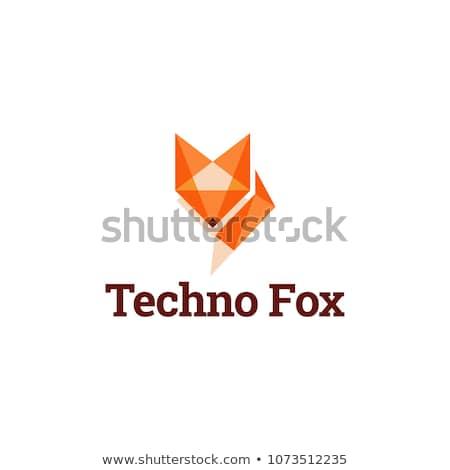 オレンジ キツネ 折り紙 孤立した 白 犬 ストックフォト © brulove