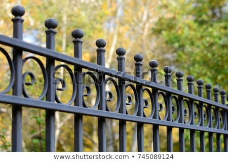 Close up of Ornate Iron Fence stock photo © Qingwa