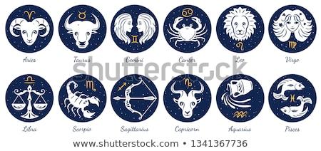 Zodiak horoskop podpisania kółko anioł astrologia Zdjęcia stock © Krisdog