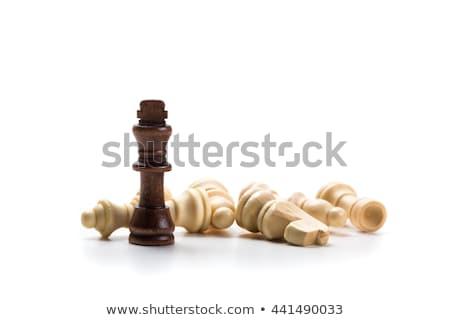 koning · complex · schaakstuk · schaduw · pion · beton - stockfoto © elnur