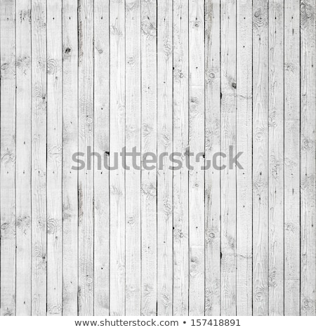 Végtelenített fából készült kerítés fehér illusztráció fa Stock fotó © colematt