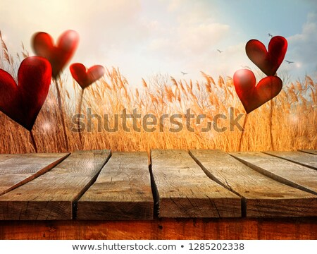 wooden table with landscape and hearts valentines background stock photo © mythja