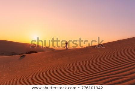 Man lopen woestijn Vietnam hemel achtergrond Stockfoto © galitskaya
