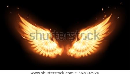 brandend · vleugels · vlam · brand · illustratie · zwarte - stockfoto © elenashow