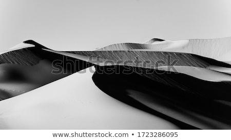 çöl dağlar güzel kum bo doku Stok fotoğraf © Illia