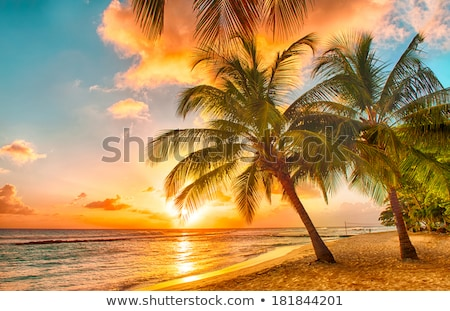 Sunrise over the ocean with beautiful unspoilt beach Stock photo © lovleah
