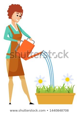 Eau fleurs fleur pot à fleurs hobby vecteur Photo stock © robuart